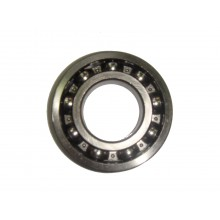 Gearbox primary shaft bearing rear